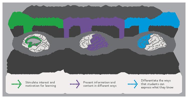 Classroom Design Standards Uk ~ Universal design for learning esperanza education