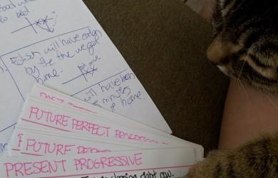 Cat Learning Grammar